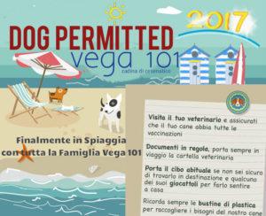 regolamento accesso cani spiaggia