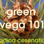 Quando il verde ed il mare si incontrano al Vega 101